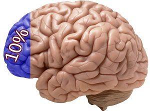 cat foloseste omul din creier