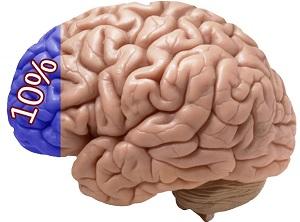 Cunoaște-ți creierul pentru a pierde în greutate Creier; Psiho