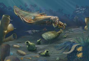 explozia-cambriana