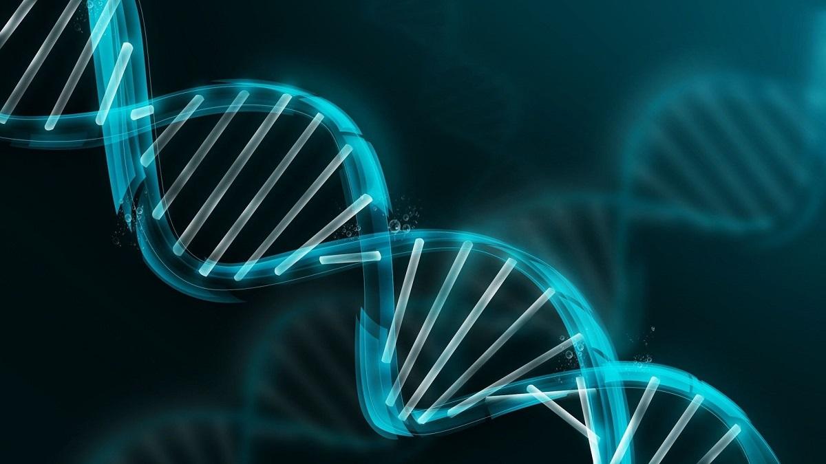 Femeia de intalnire a ADN- ului