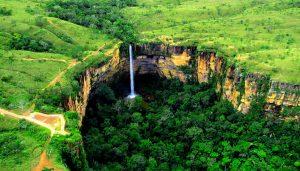 brazilia-padure