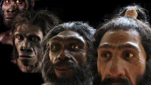 homo-sapiens