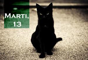 pisica-13-marti