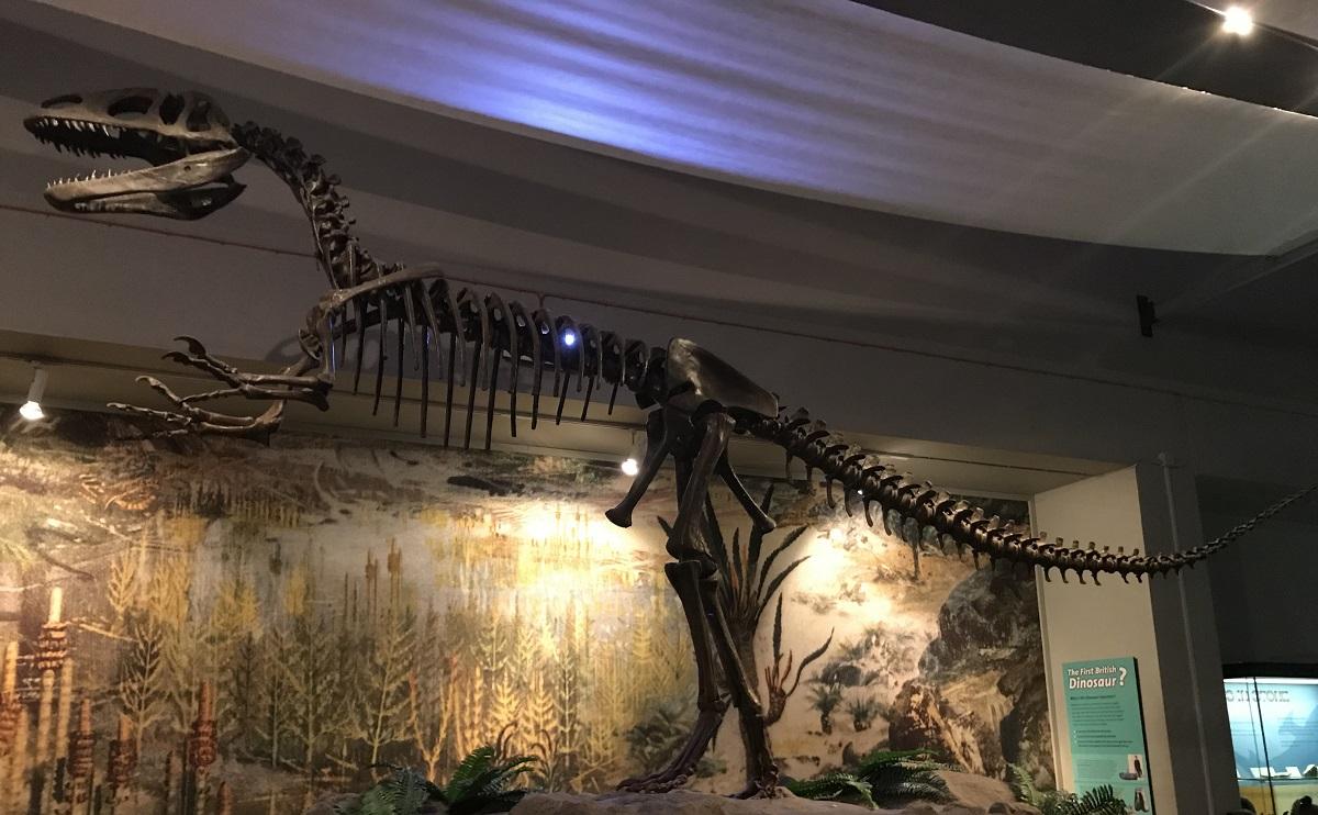 Primul dinozaur descoperit